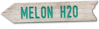 "Stylized wooden sign that says ""Melon H20"""