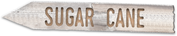 "Stylized wooden sign that says ""Sugar Cane"""